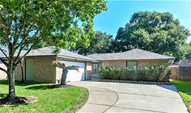 17023 Stone Stile Drive, Friendswood, TX 77546 (MLS #18433197) :: Magnolia Realty