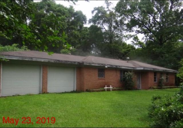 710 Youpon Street, Woodville, TX 75979 (MLS #18451466) :: The Queen Team