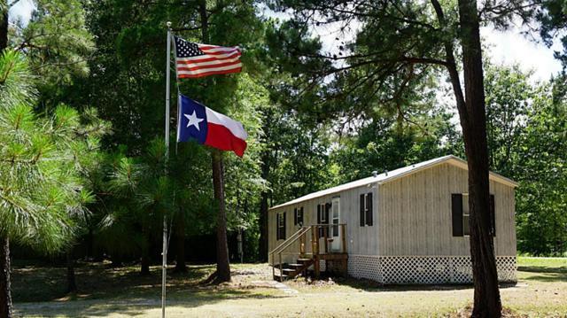 260 Woodland Shores Drive, Point Blank, TX 77364 (MLS #18459249) :: Mari Realty