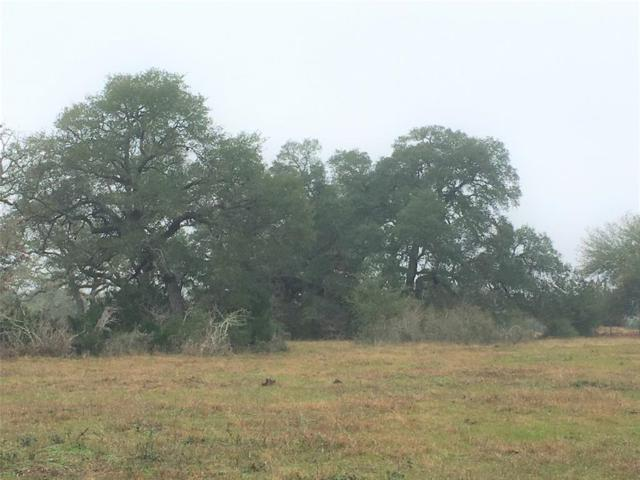 7 acres Smith Rau Rd, Columbus, TX 78934 (MLS #18530439) :: Texas Home Shop Realty