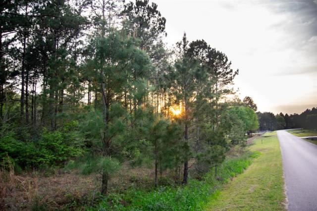 Lot 48 Elrod, Willis, TX 77378 (MLS #18564339) :: Magnolia Realty