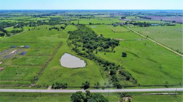14350 Cochran Road, Waller, TX 77484 (MLS #18573330) :: NewHomePrograms.com LLC
