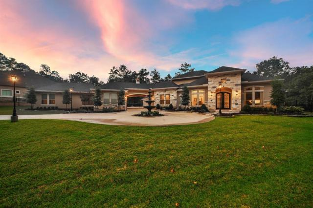 28402 Meadow Forest, Magnolia, TX 77355 (MLS #18656294) :: Giorgi Real Estate Group