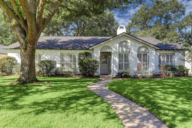 2607 Bandelier Drive, Houston, TX 77080 (MLS #18690618) :: Connect Realty