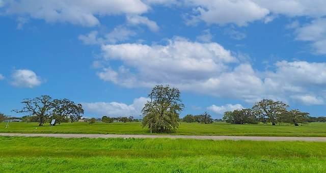 Lot 21 Hwy 35 /Broken Arrow Trl, Angleton, TX 77515 (MLS #18721029) :: Texas Home Shop Realty