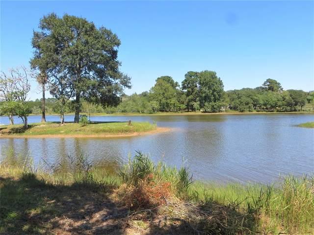 TBD TR 77 Crooked Creek Drive, Sheridan, TX 77475 (MLS #18798140) :: The Queen Team