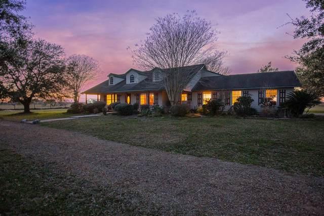 5029 Neiman Road, Pattison, TX 77423 (MLS #18895825) :: Homemax Properties