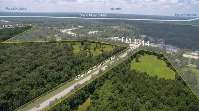 000 Fm 1314, New Caney, TX 77357 (MLS #19013700) :: Phyllis Foster Real Estate