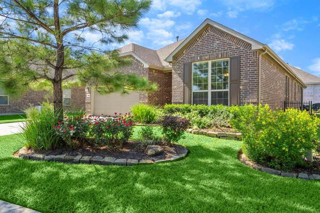 228 Palomino Court, The Woodlands, TX 77382 (MLS #19049404) :: Giorgi Real Estate Group