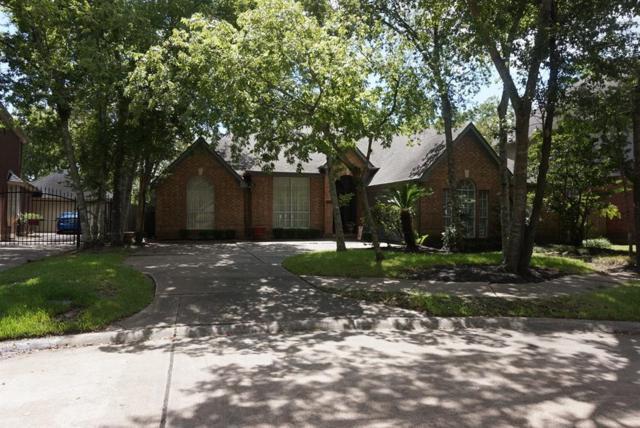 1518 Briar Cottage Court, Sugar Land, TX 77479 (MLS #19057785) :: The Sansone Group