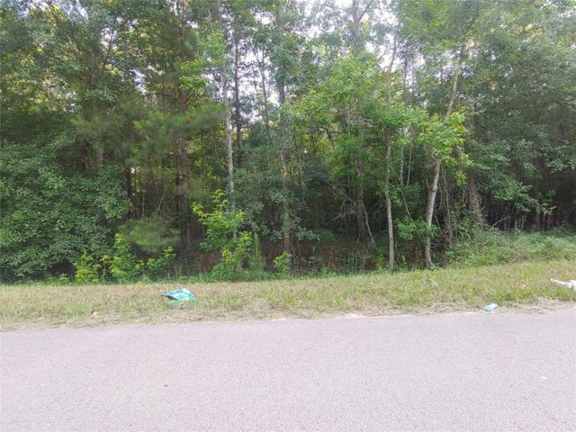 Lot 80 Walker, Conroe, TX 77306 (MLS #19075607) :: Christy Buck Team