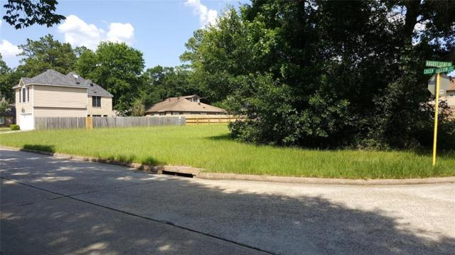 22814 August Leaf Drive, Tomball, TX 77375 (MLS #19126821) :: Giorgi Real Estate Group