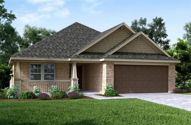 9019 Japonica Drive, Rosenberg, TX 77469 (MLS #19168686) :: Homemax Properties