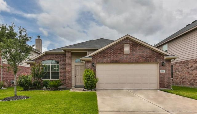 8226 Silent Deep Drive, Rosenberg, TX 77469 (MLS #19223491) :: Fine Living Group