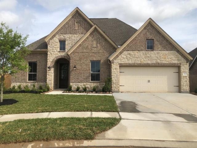3101 Allendale Cliff Lane, League City, TX 77573 (MLS #19275850) :: Rachel Lee Realtor