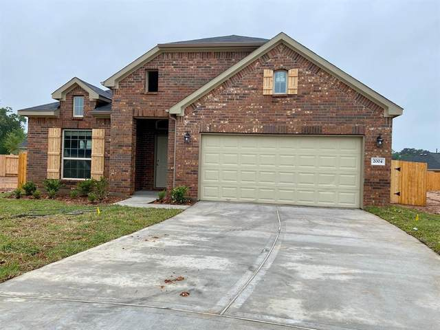 2004 Cedar Tree Court, Conroe, TX 77301 (MLS #19321280) :: Giorgi Real Estate Group