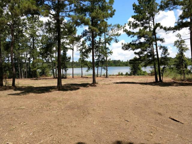 656 Private Rd 8356, Bronson, TX 75930 (MLS #19325630) :: Connect Realty