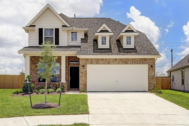 14103 Bright Clearing Court, Houston, TX 77045 (MLS #19364157) :: Christy Buck Team