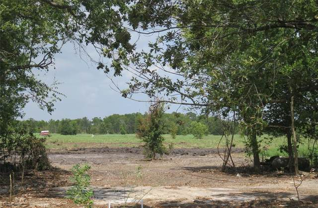415 County Road 227, East Bernard, TX 77435 (MLS #19383520) :: All Cities USA Realty