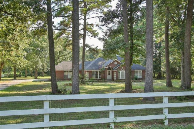 19627 Sapphire Circle, Magnolia, TX 77355 (MLS #19396391) :: The Home Branch