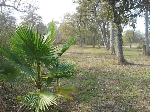32 Tierra Grande Drive, Needville, TX 77461 (MLS #19574093) :: Green Residential