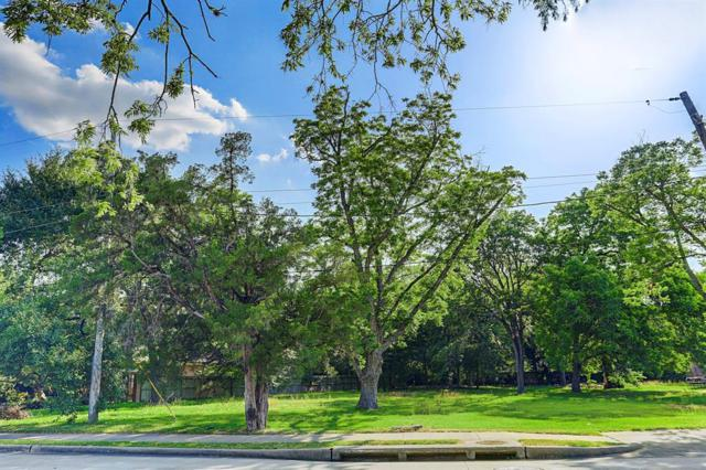 909 Brogden Road, Houston, TX 77024 (MLS #19601670) :: Krueger Real Estate