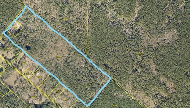 900 Harper Road, New Waverly, TX 77358 (MLS #19621694) :: Giorgi Real Estate Group