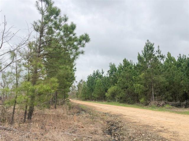 00000 County Road 4450, Avery, TX 75554 (MLS #19636329) :: Giorgi Real Estate Group