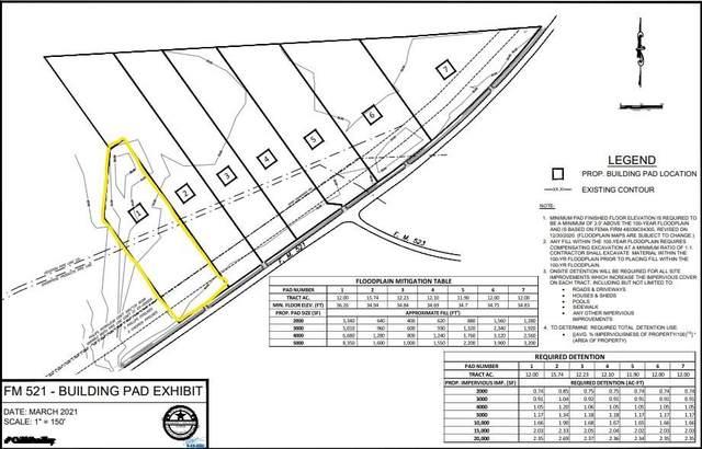 1 Fm 521, Angleton, TX 77515 (MLS #19661601) :: Lerner Realty Solutions