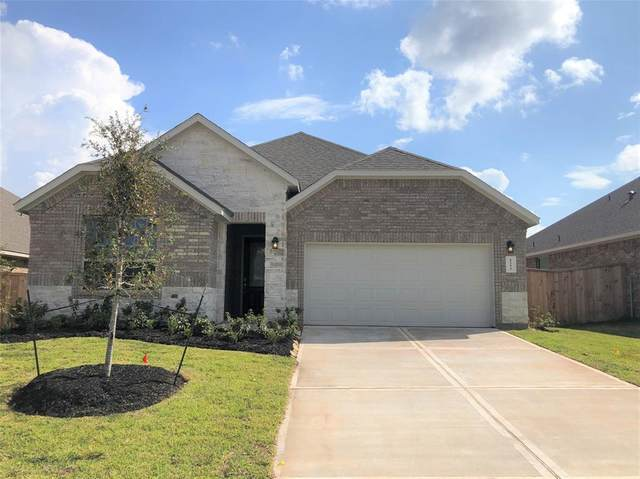 1255 Sandstone Hills Drive, Montgomery, TX 77316 (MLS #19746892) :: The Sansone Group
