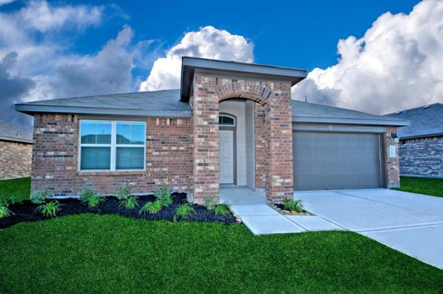 1815 Welsh Canyon Court, Rosenberg, TX 77469 (MLS #19751736) :: The SOLD by George Team