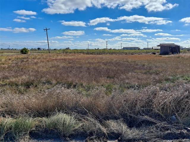 23 Albatross, Sargent, TX 77414 (MLS #19821985) :: Michele Harmon Team