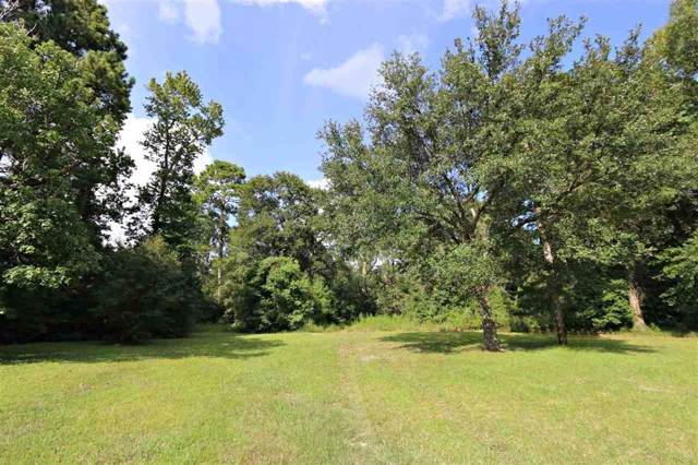 TBD Hwy 87, Kirbyville, TX 75956 (MLS #19920405) :: Texas Home Shop Realty