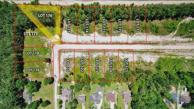 Lot 176 Evening Lane, Porter, TX 77365 (MLS #19931733) :: The SOLD by George Team