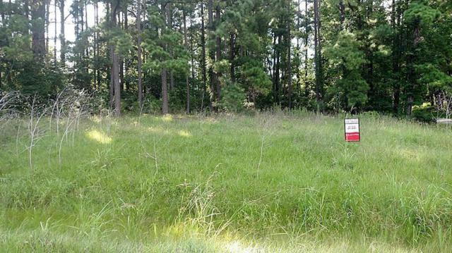 TBD Echo  Lane, Onalaska, TX 77360 (MLS #20008681) :: Giorgi Real Estate Group