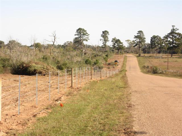 00000 Piney Woods Road, Alleyton, TX 77345 (MLS #20025142) :: Connect Realty