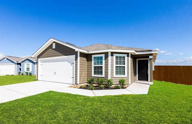 22032 Angelico Drive, Magnolia, TX 77355 (MLS #20031515) :: The Sansone Group