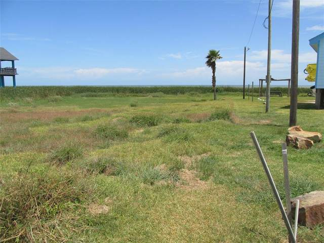 168 County Road 230, Sargent, TX 77414 (MLS #20060013) :: My BCS Home Real Estate Group