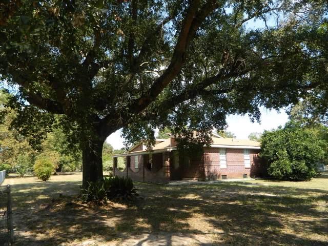 30742 High Meadow Drive, Magnolia, TX 77354 (MLS #2008103) :: The Heyl Group at Keller Williams