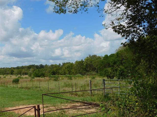 000 Fm 1011, Hardin, TX 77561 (MLS #20091406) :: The SOLD by George Team