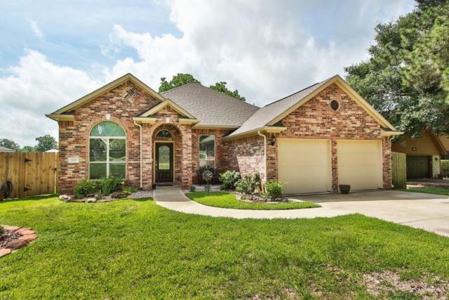 515 Pine View Circle, Montgomery, TX 77356 (MLS #20112079) :: Krueger Real Estate