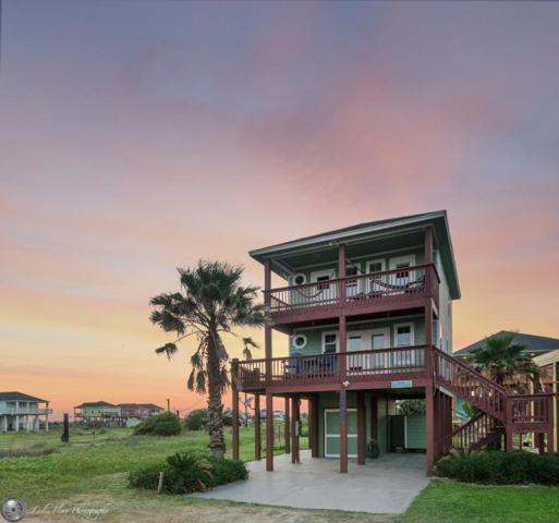 1755 Redfish Lane, Crystal Beach, TX 77650 (MLS #20175734) :: Texas Home Shop Realty