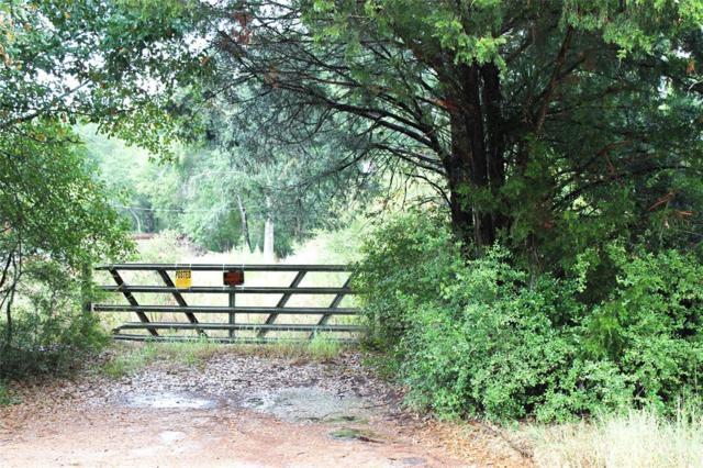 000 Menis, Weimar, TX 78962 (MLS #20201216) :: Fairwater Westmont Real Estate