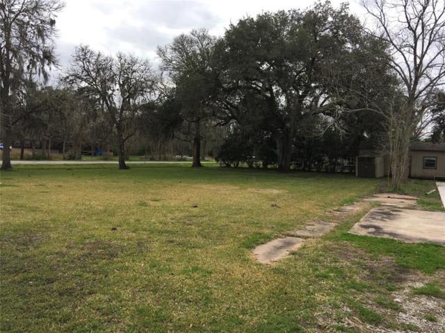 413 Red Oak Street Street, Brazoria, TX 77422 (MLS #20207299) :: Caskey Realty