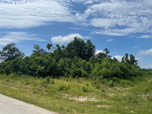 1965 Road 5030, Cleveland, TX 77327 (MLS #20225305) :: The SOLD by George Team