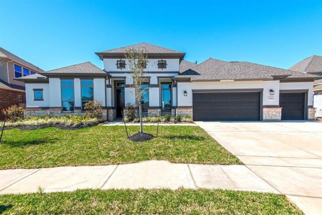 20703 Stillhaven, Spring, TX 77379 (MLS #20267532) :: Magnolia Realty