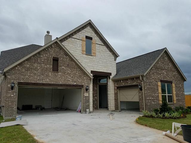 3605 White Wing Lane, Deer Park, TX 77536 (MLS #20292524) :: Christy Buck Team