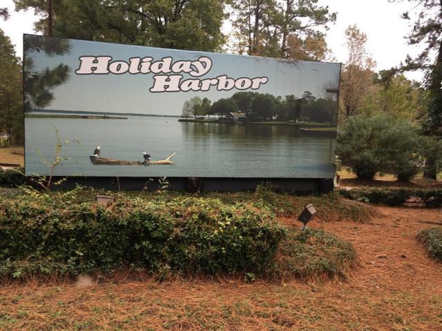 Lot 877 Holiday Lane, Coldspring, TX 77331 (MLS #20300047) :: Texas Home Shop Realty