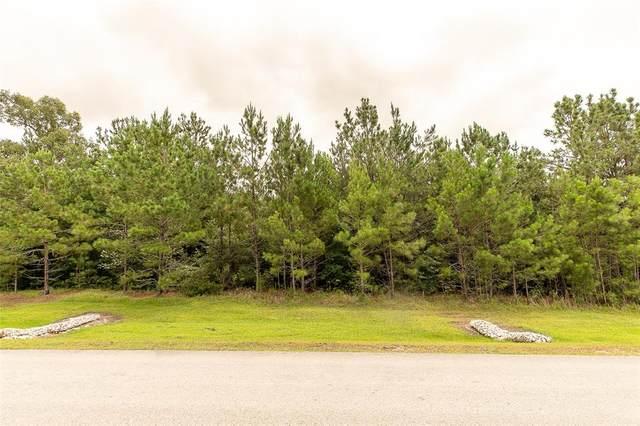 26223 Crown Ranch Boulevard, Montgomery, TX 77316 (MLS #20306335) :: Green Residential