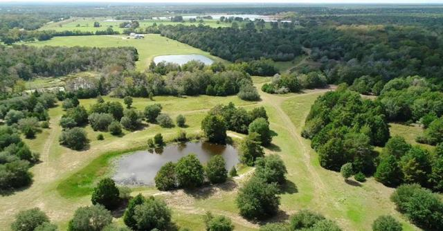 0000 Carmine Cemetery Rd Road, Carmine, TX 78932 (MLS #20445767) :: Fairwater Westmont Real Estate